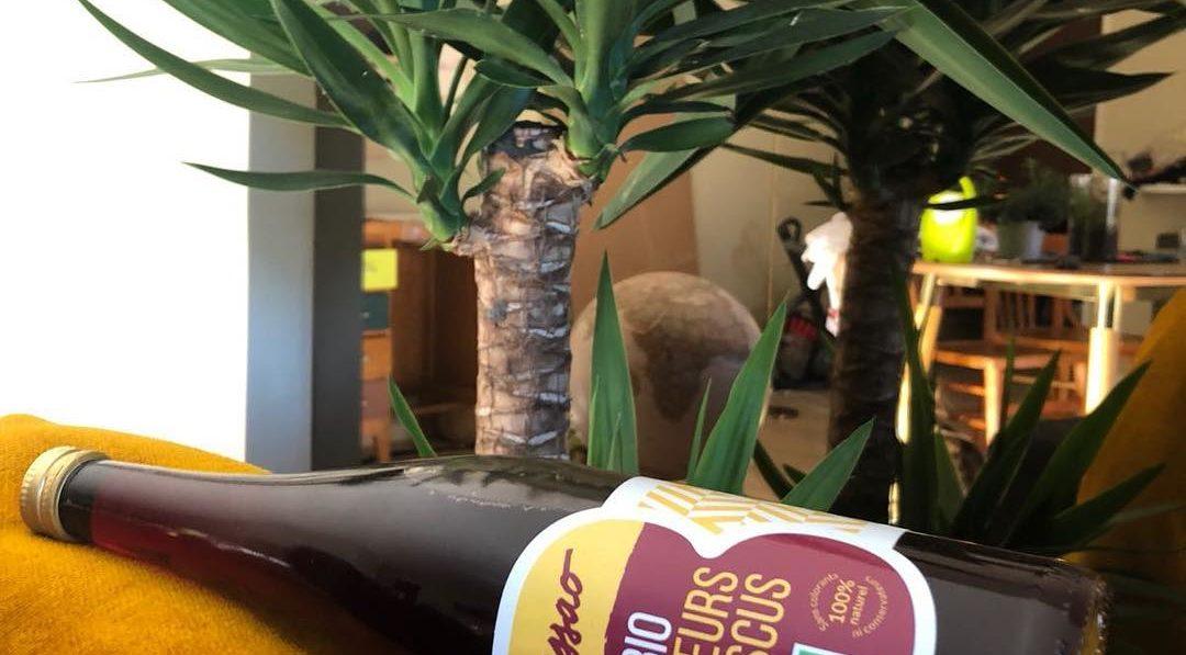 Les bienfaits santé du jus d'hibiscus bio